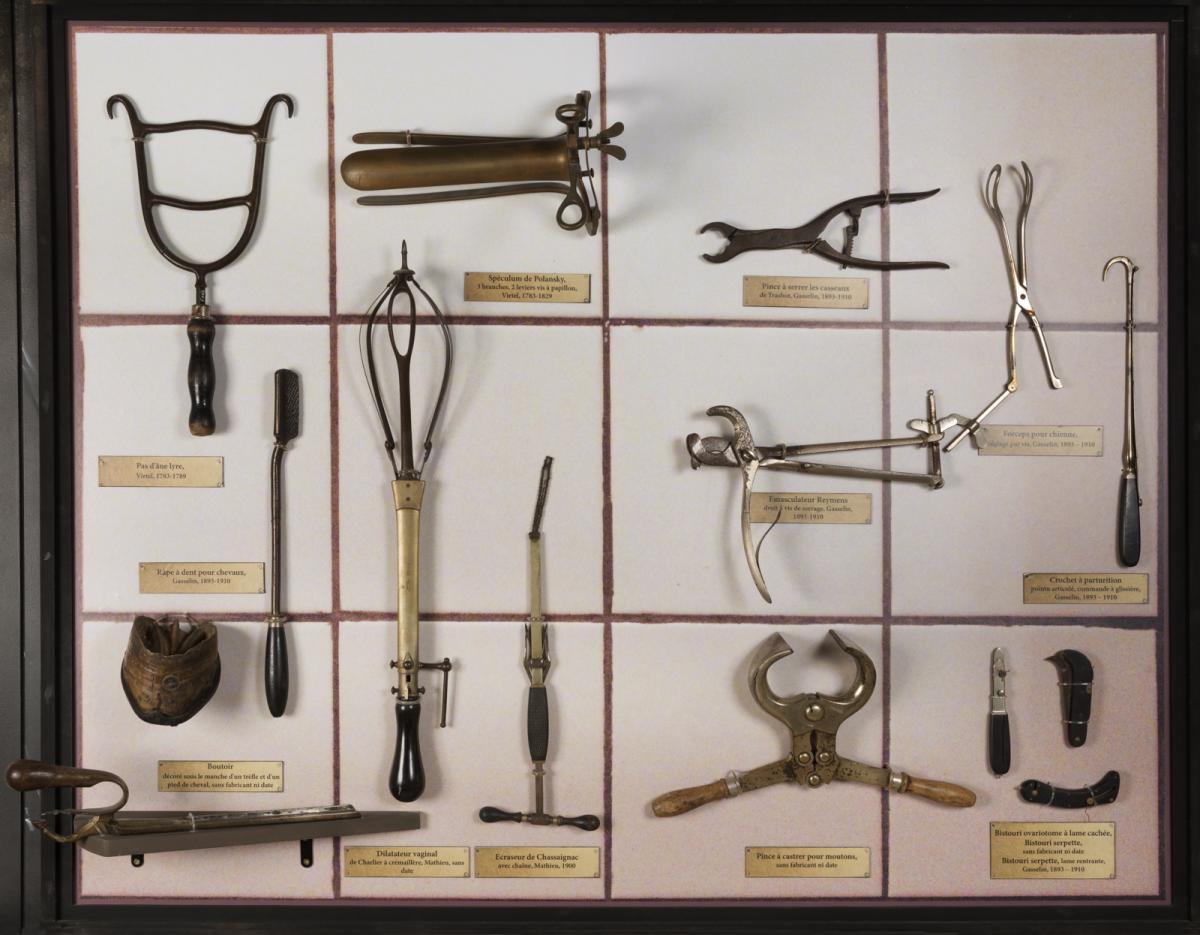 instrumentsveterinaire